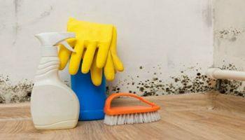 التخلص من الرطوبة في المنزل