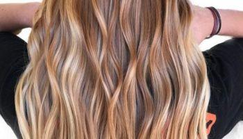 العناصر الهامة لتغذية الشعر